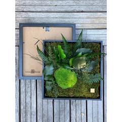 mur végétal rouen et paris