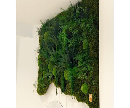 mur végétal, mur végétaux entreprise rouen et paris