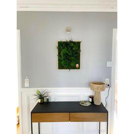 mur végétal sur mesure rouen et paris