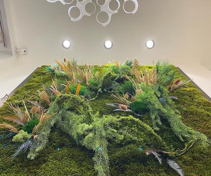 Mur et cadre végétal rouen et paris
