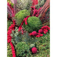 mur végétal paris et rouen