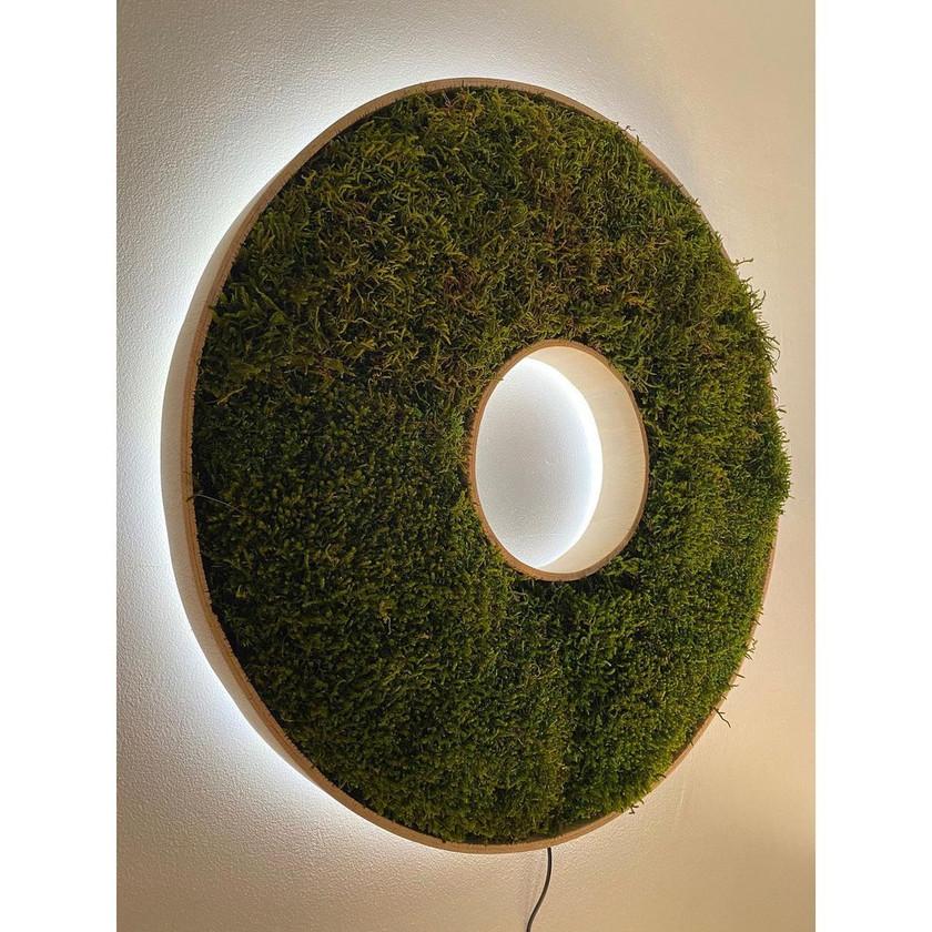 donuts végétal rouen et paris