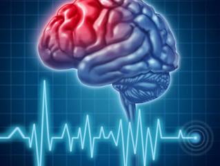 Ученые Вашингтонского университета: билингвизм положительно влияет на развитие мозга у детей