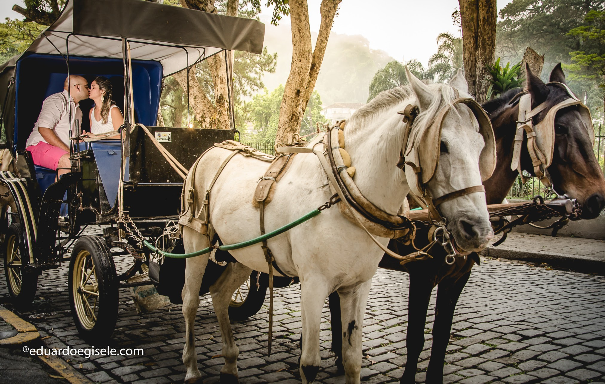 pre wedding Douglas + Luana-65