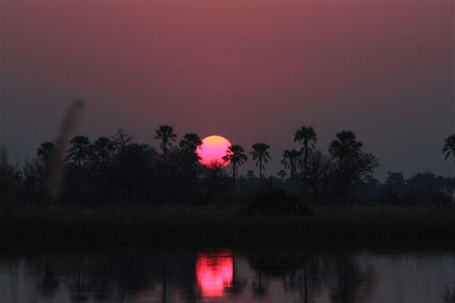 Okavango boat safari