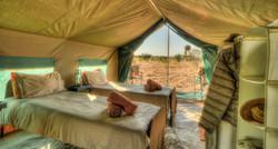 Standard Tent
