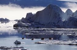Nathab_Greenland_1©_Steve_Smith