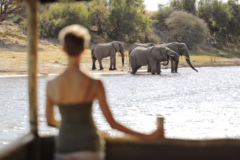 Meno a Kwena's Boteti River