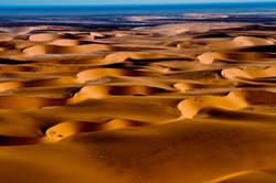 Namibia Tracks and Trails