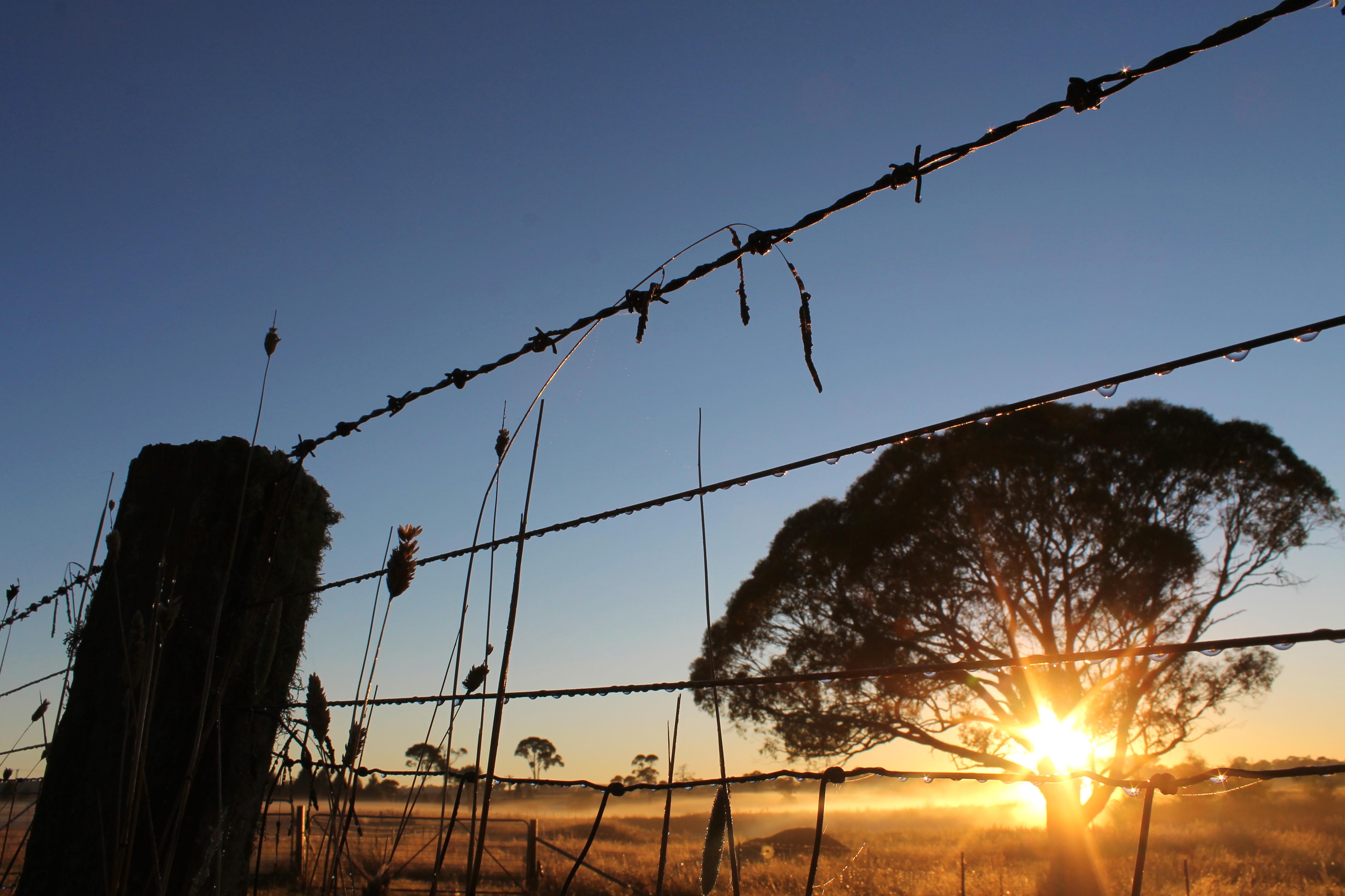 Sunrise at Kenilworth