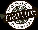WWN Eggs Logo.png