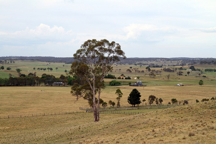 2014 Spring - Dry