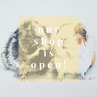 Our shop is open 02.png