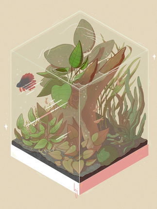 Iso Fish Tank