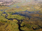 Magical okavango delta in botswana Acacia Holidays
