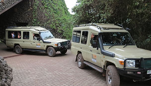 Acacia Holidays tour vans for small group or exclusive use