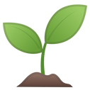 22328-seedling-icon.png
