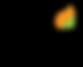 Final AGNIi Logo.png
