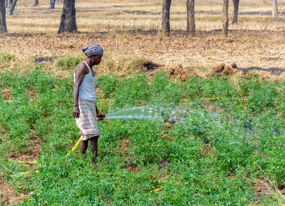 WATER - The bane of the Indian farmer
