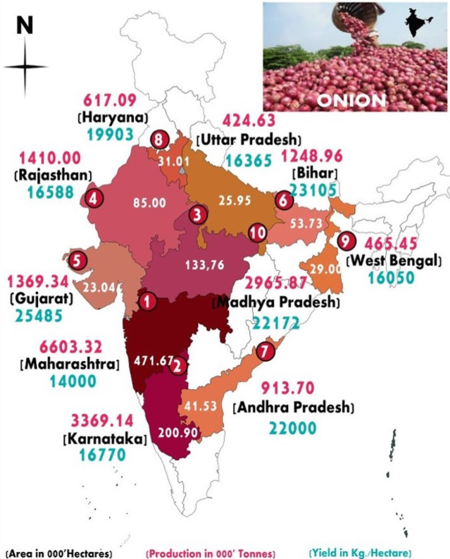 Largest onion producing states in India[5]