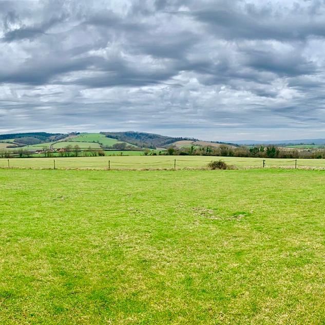 Manor Farm - Hillside Paddock