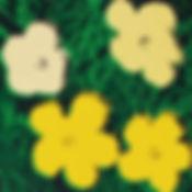 앤디워홀 flowers II 6  58.458.4cm 1964.jpg