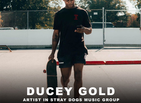 Ducey Gold - Stray Dogs Music Group