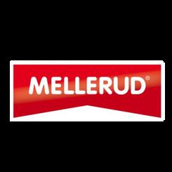 BVMG media relations dla Mellerud