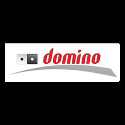BVMG DTP dla Domino