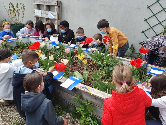 À l'école de l'écologie pour les élèves du diocèse du Havre