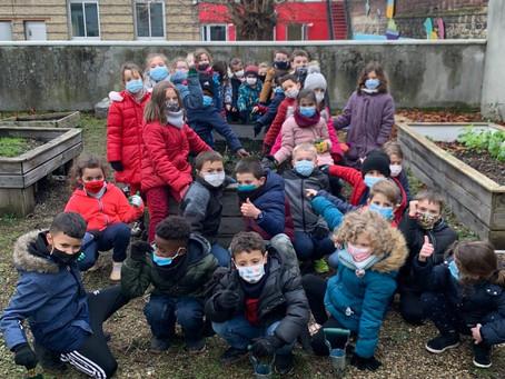 Ecole St Léon - Le Havre : découverte du potager