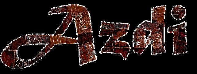 Logo Azdi