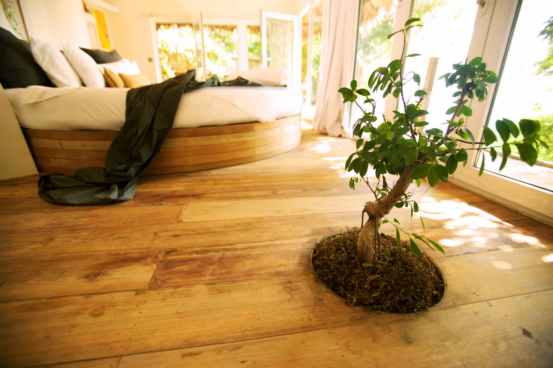 Somewhere Only We Know Resort on Koh Phangan. www.somewhere-onlyweknow.com