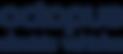 EV Logo (blue)-01.png