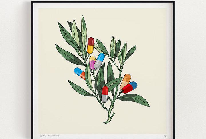 Olive Branch | Fine Art Print