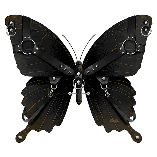 Butterfly_R13.png