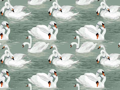 FP_Patterns_Swans.jpg