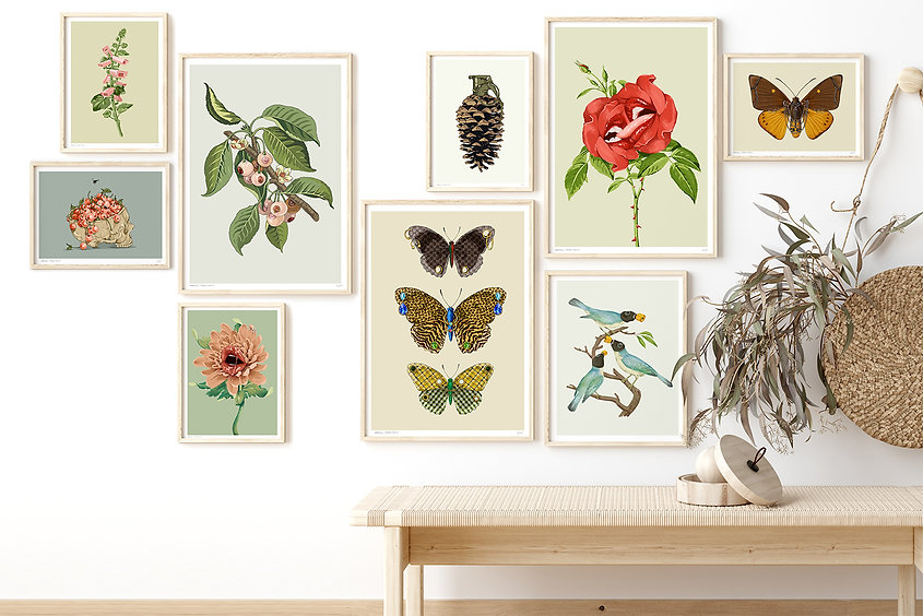 Prints_collection.jpg
