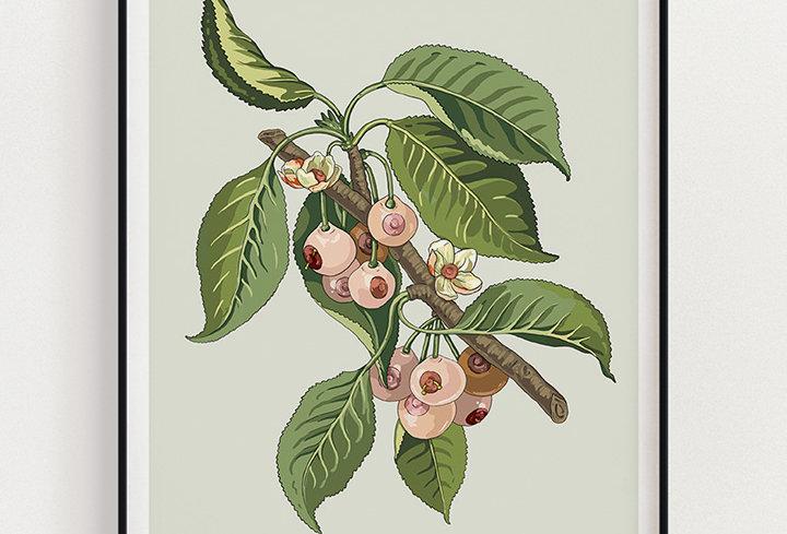 Hanging | Fine Art Print