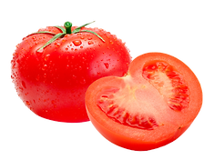 21718-5-tomatoes-with-a-transparent-back