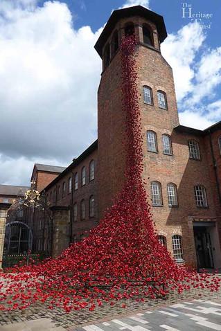 Poppies arrive in Derby