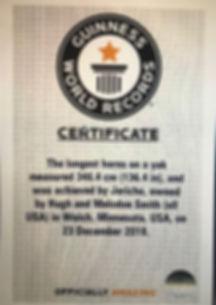 GuinnessCertificateJericho.jpg