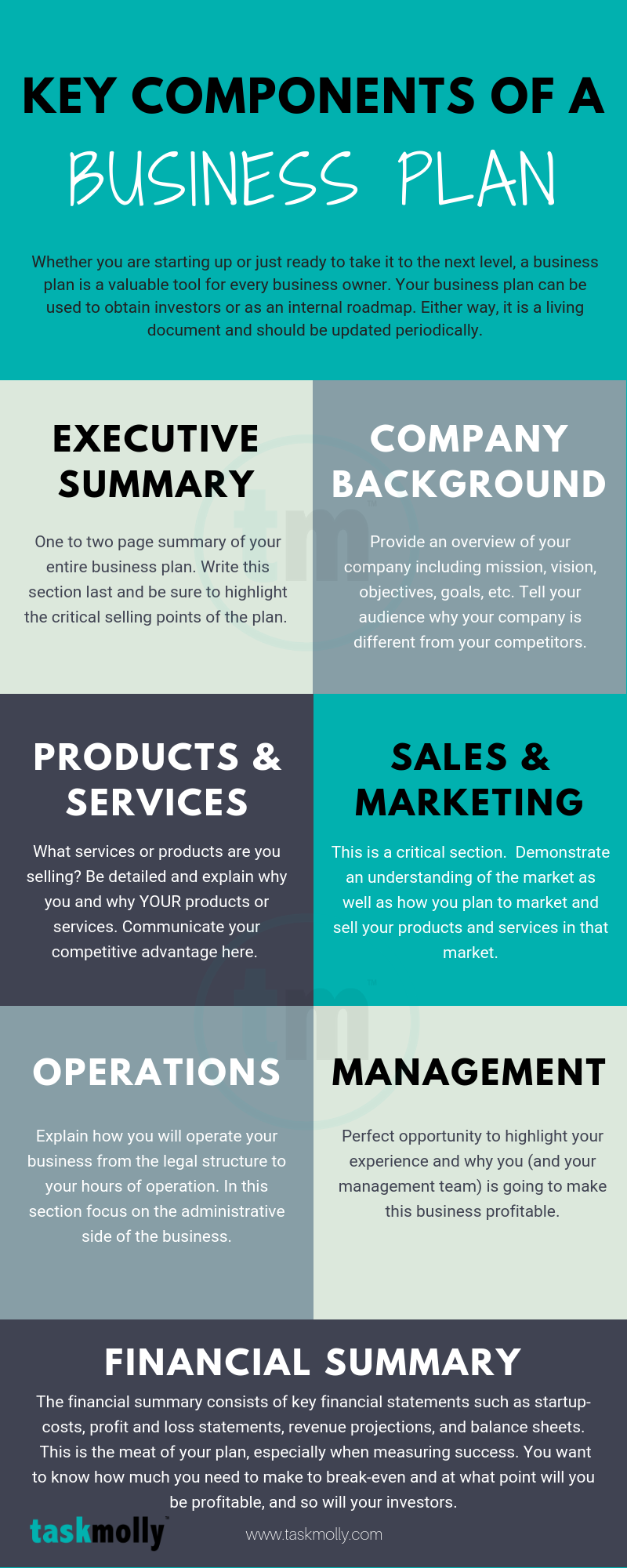 Key Components of a Business Plan ( Infographic)
