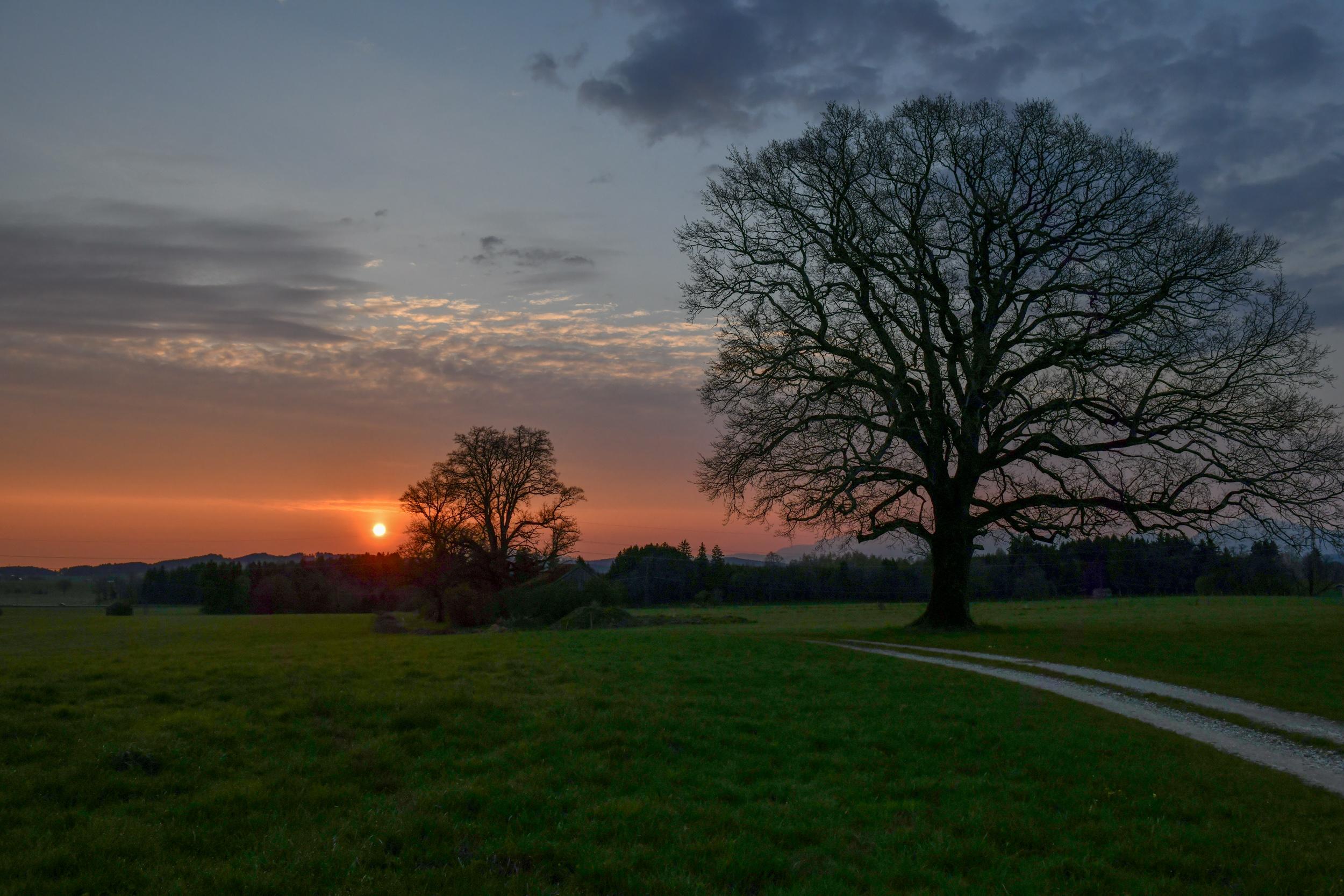 Sonnenaufgang südlich Spatzenhausen