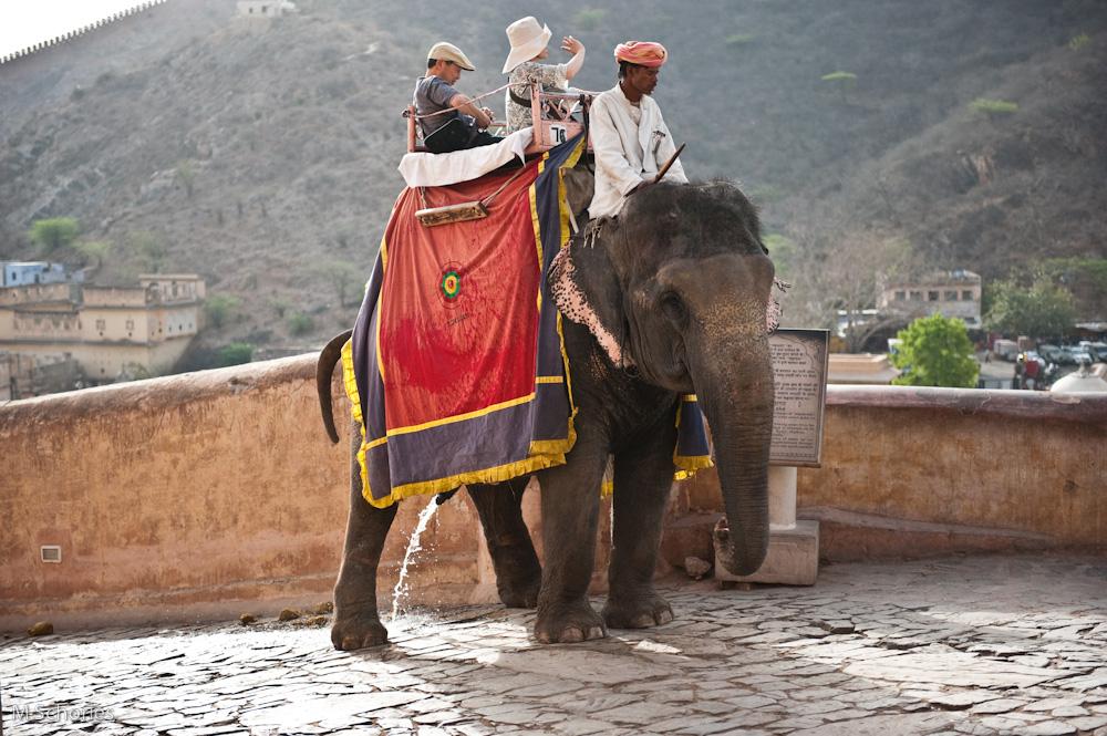 Jaipur-1.jpg