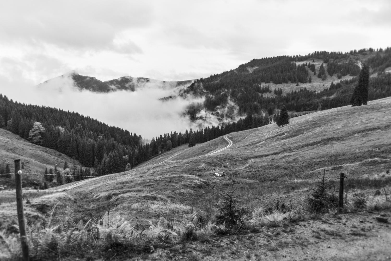 Nebel in schwarz-weiß