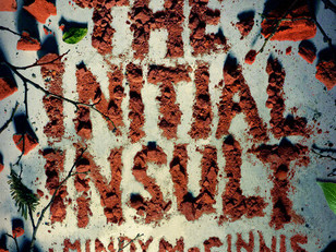 The Initial Insult by Mindy McGinnis
