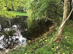 Søen i haven..jpg