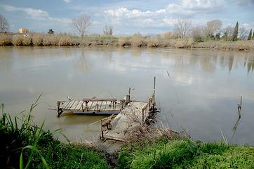 Attracco Arno Pisa PartecipArno