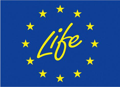 La proposta PartecipArno candidata al programma LIFE della Commissione Europea